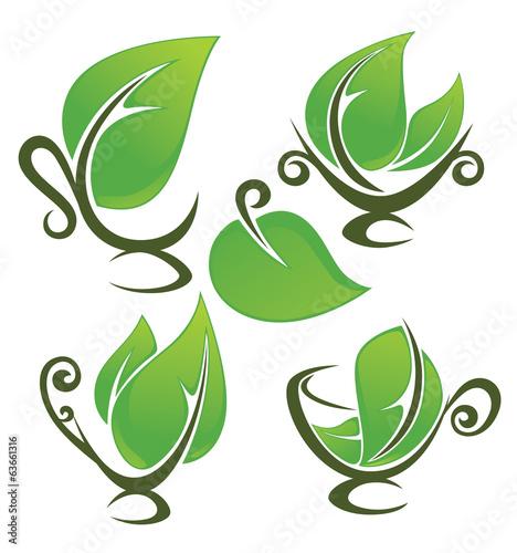 wektorowa-kolekcja-naturalnych-napojow-i-swiezych-zielonych-lisci