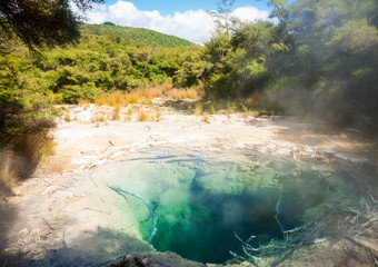Tokaanu Thermal Pools in New Zealand