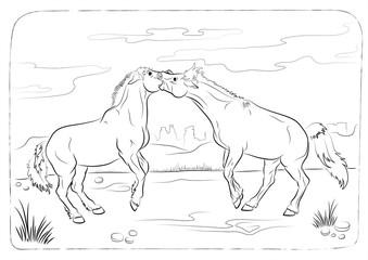 wild horses - coloring book