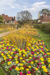Brightly coloured tulips in springtime at RHS Gardens, Wisley