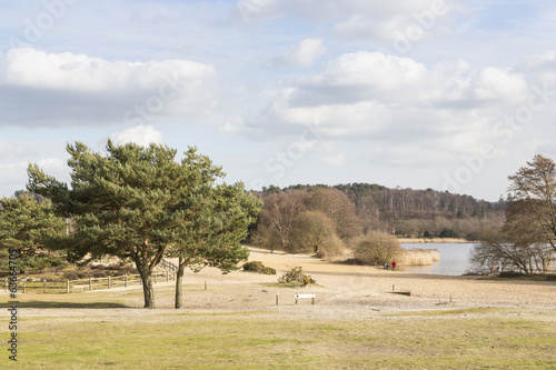 Frensham Great Pond, Surrey, UK, lake and sandy beach area