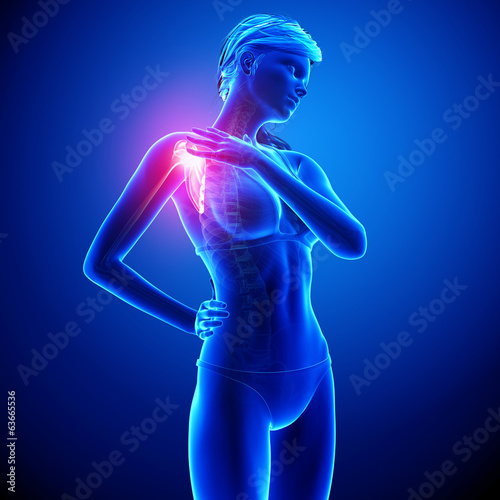 female shoulder pain anatomy in blue