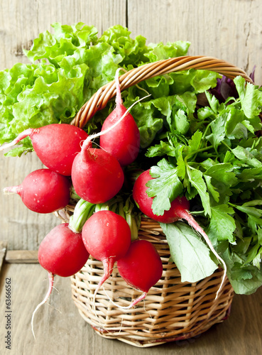 Radish and Greens in a Wicker Basket