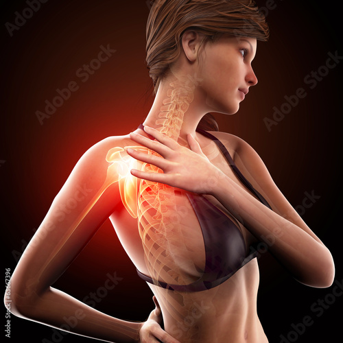 female shoulder pain anatomy
