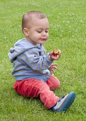 Toddler child eating strawberry on the grass in a garden.