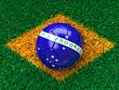 brazil grass flag