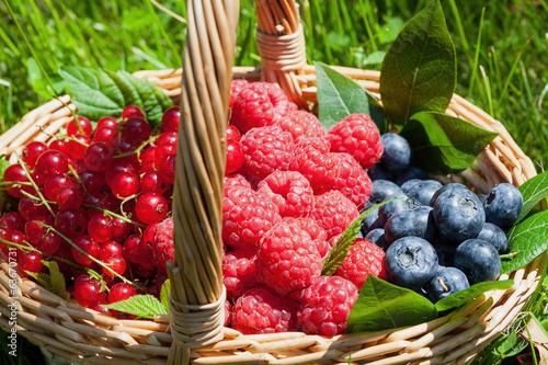 Leinwandbild Motiv Fruity basket