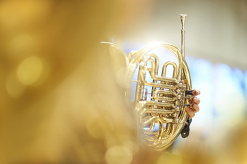 French horn with fingers, valves and tubes