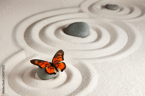 canvas print picture Zen rocks with butterfly