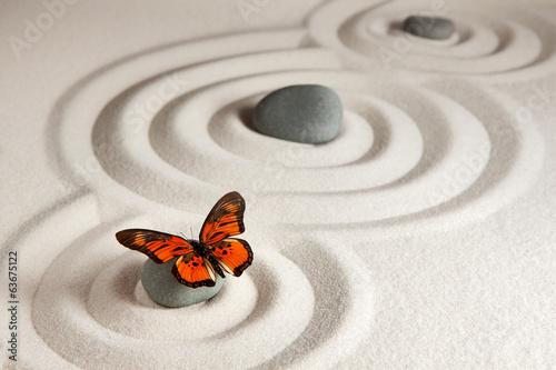 Papiers peints Pierre, Sable Zen rocks with butterfly