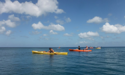 Snorkelling from Kayaks