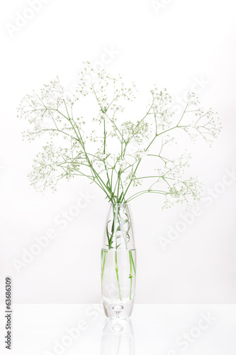 White flowers in vase isolated on white