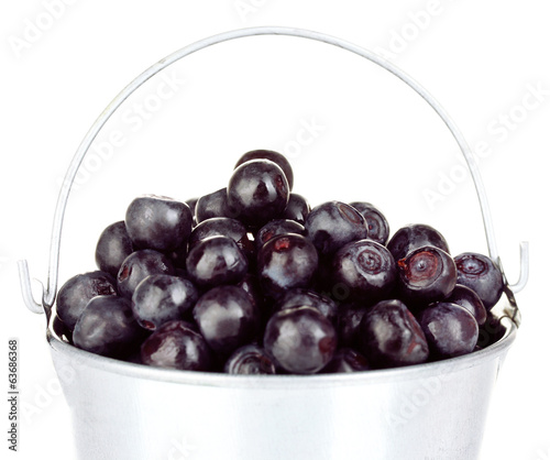 ripe blueberries in silver bucket on white background close-up