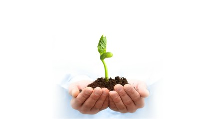 Man holding growing plant in soil over white background.