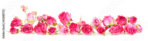 Beautiful pink dried roses, isolated on white