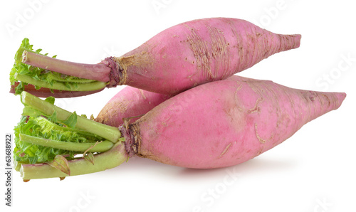 party loyalty radish