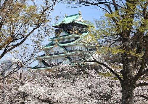 大阪城春景色