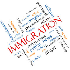 Immigration Word Cloud Concept Angled