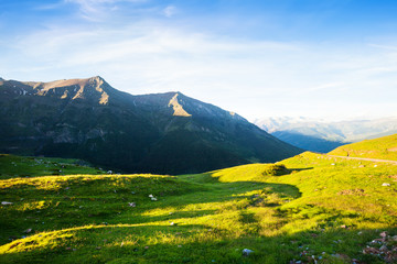 highland meadow at Pyrenees in summer