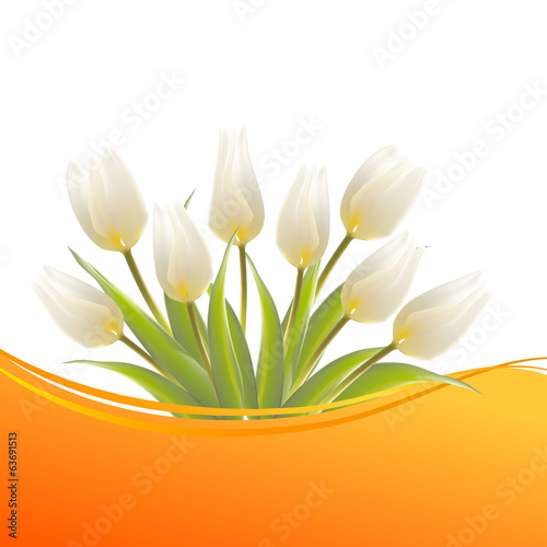 Tulip, floral background for your card.