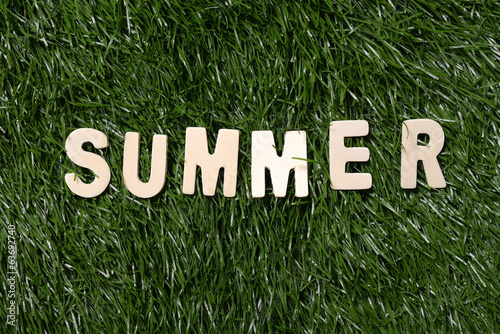 Summer Wooden Sign On Grass