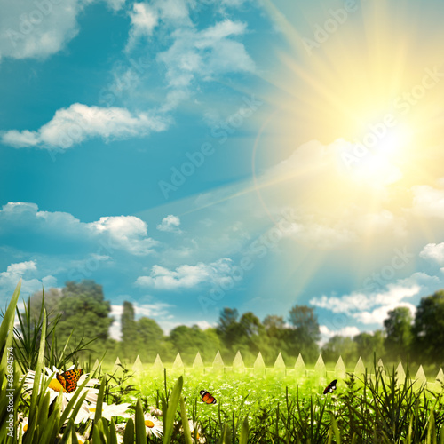 Beauty summer day on the farm, natural backgrounds