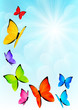 Color butterflies on sunny sky background