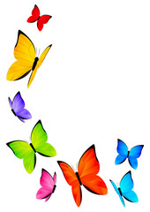 Color butterflies for Your design