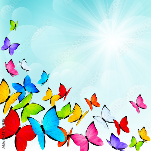 Color butterflies on sunny background