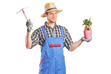 Male gardener holding a plant