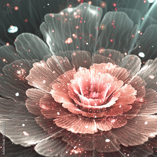 pink and gray abstract  flower