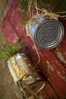 Plantes dans des pots en métal sur une terrasse
