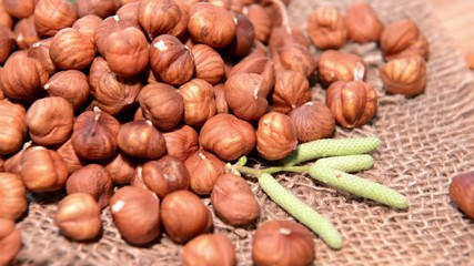 Rotating Hazelnuts Video (loopable)