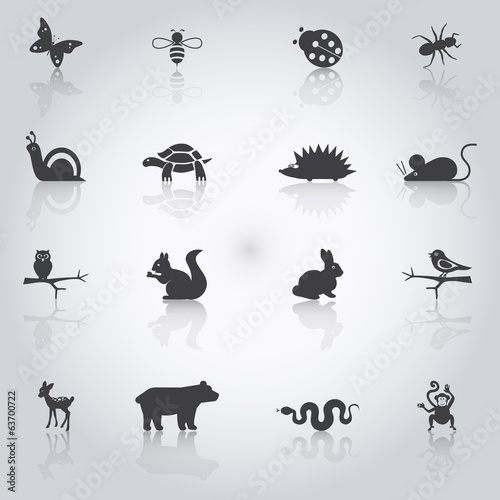 llustrations of animals
