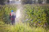 spraying pesticide poster