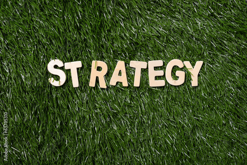 Strategy Wooden Sign On Grass