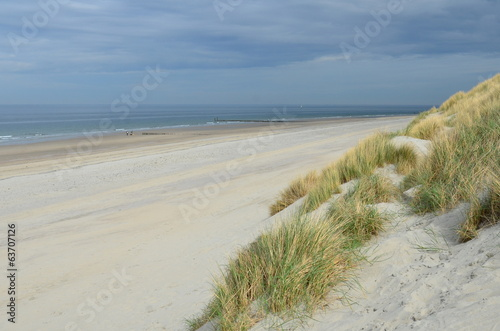 Dunes, beach and sea in Zeeland, Netherlands