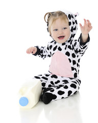 Waving Baby Holstein