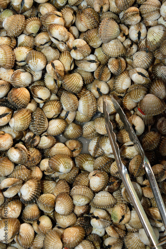 Scallops on local market