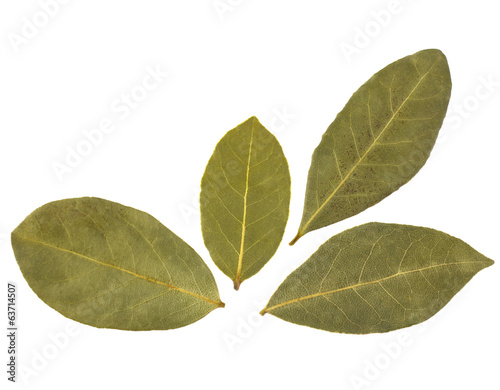 Aromatic bay leaves