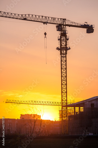 Cranes on a sunset background