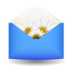 Open envelope with chamomile flower