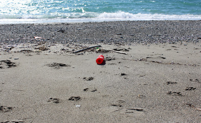 Plastic Bottle on Beach, Pollution