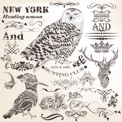 Set of vector flourishes and hand drawn elements in vintage styl