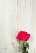 beautiful rose on wooden surface