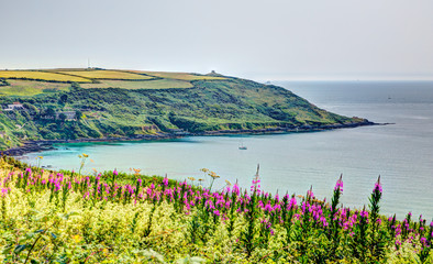 Rame Head Whitsand Bay Cornwall UK