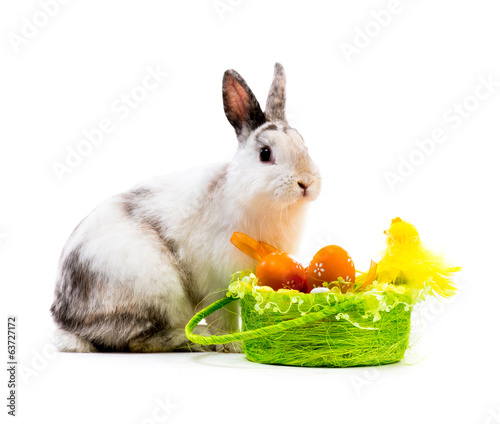 rabbit and a basket with easter eggs