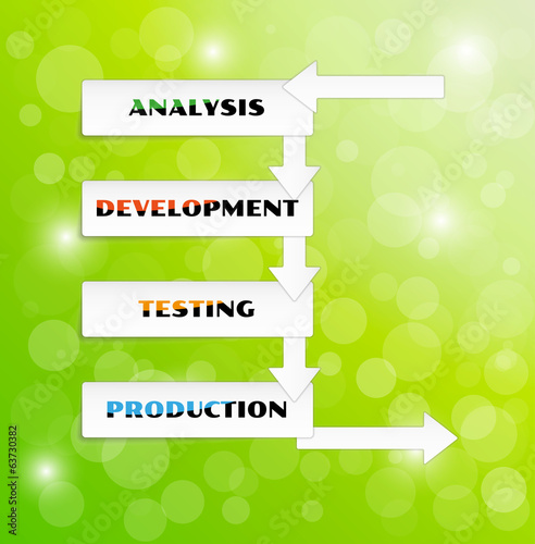 vector development cycle