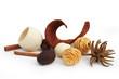 Boules et écorces séchés (Pot pourri)