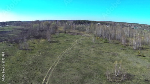 Birchwood in the field . Spring Landscape. Aerial